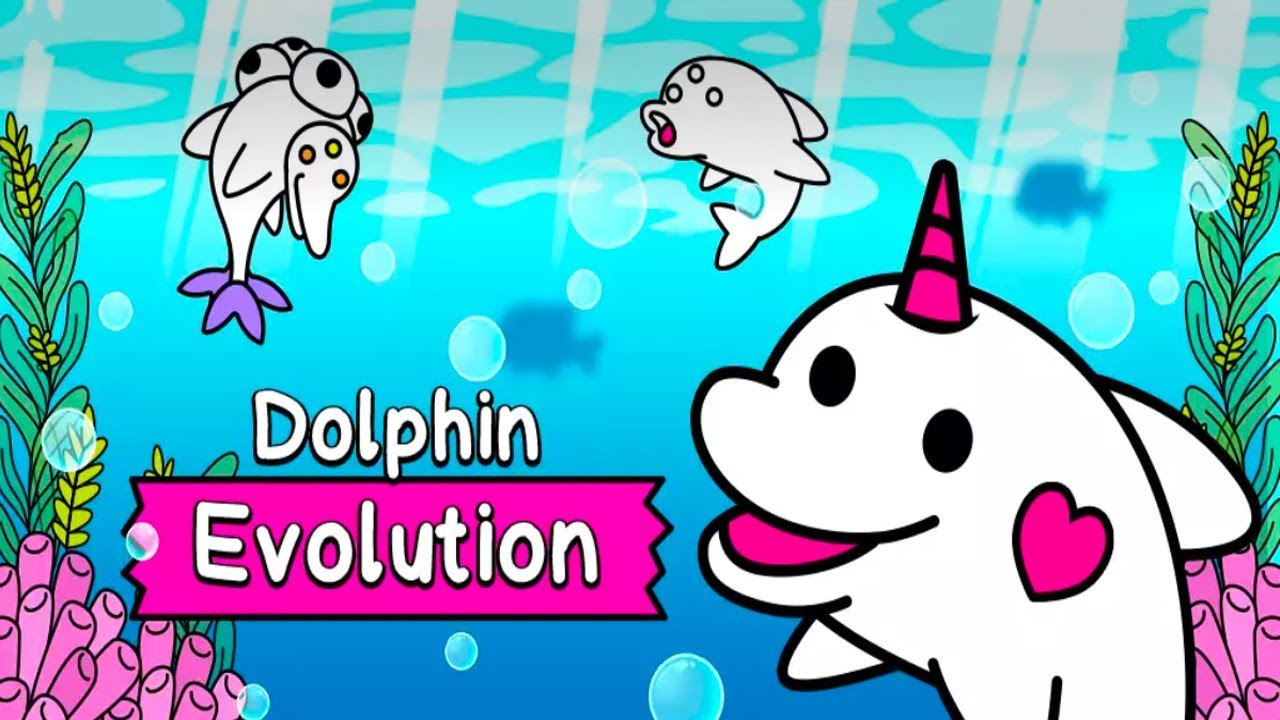 Dolphin Evolution